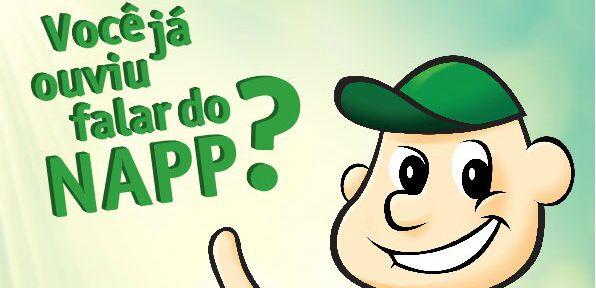 napp_capa
