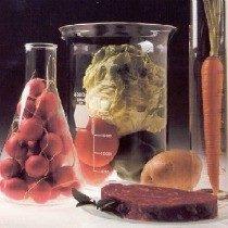 química-dos-alimentos