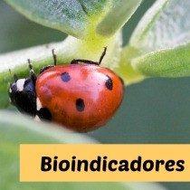 bioindicadores-uninorte-2